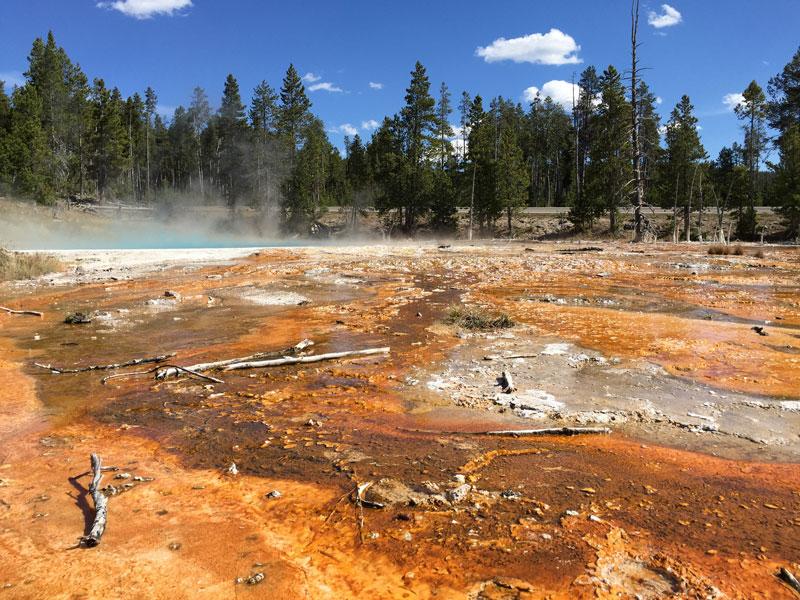 Yellowstone Lower Geyser Basin