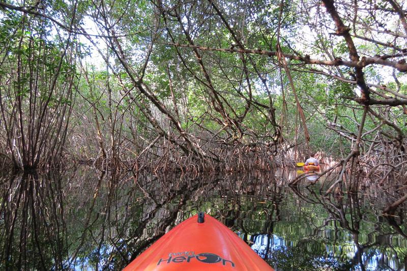 Op het water in de Everglades
