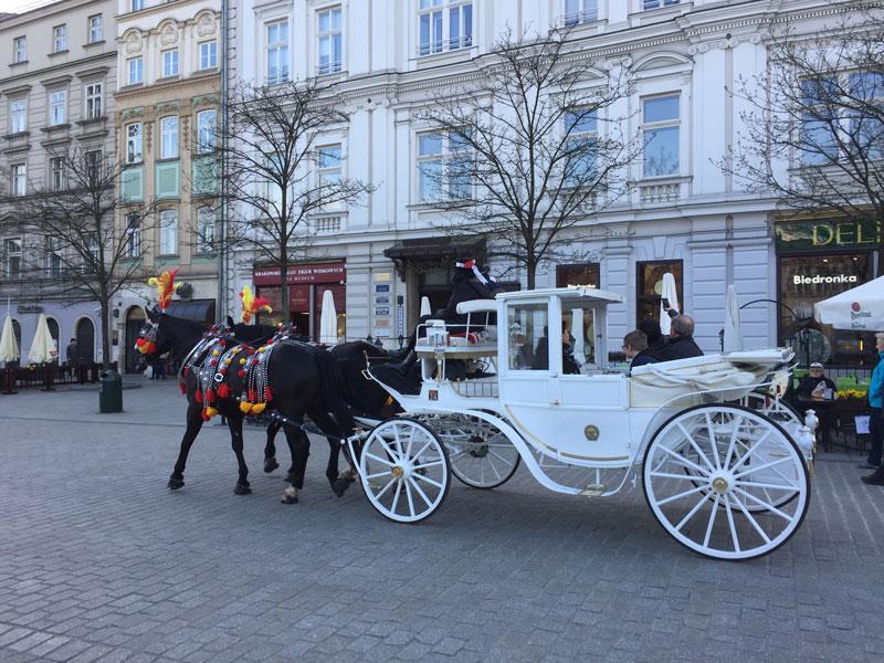 Krakau paard en wagen