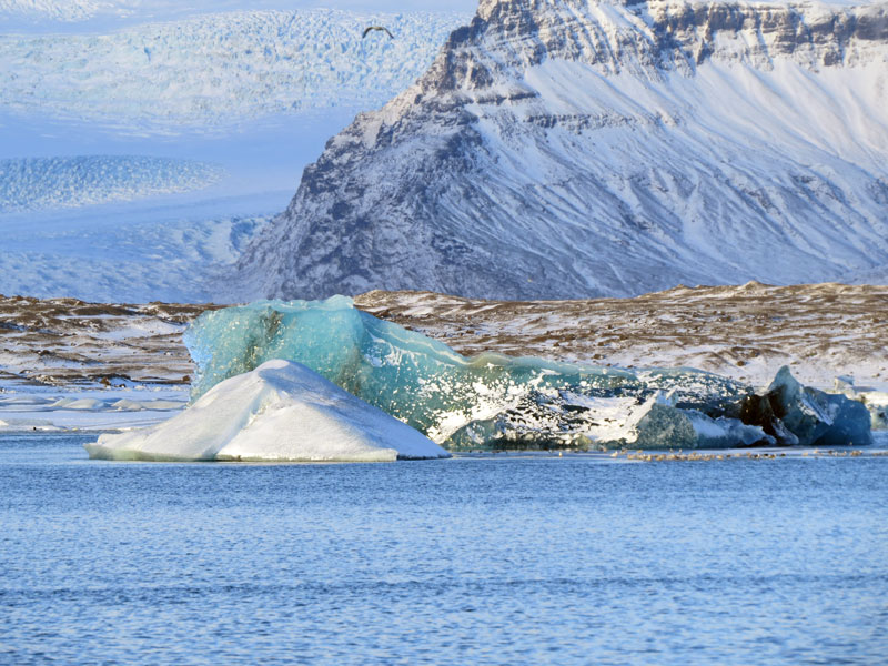 Jokulsarlon Ice Cave Tour IJsland